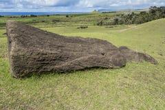 Moai au sol sur la pente du volcan de Rano Raraku image libre de droits