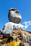 Moai auf Wasserfall Stockbild