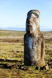 Moai diritto nell'isola di pasqua Fotografie Stock