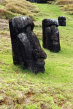 Moai- Easter Island, Chile Stock Image