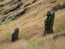 Moai In Grasses Stock Images