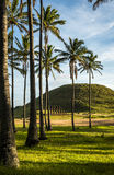 Moai na Ilha de Páscoa, o Chile Imagens de Stock