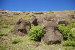 Moai niet open aan het publiek op het Eiland van Pasen Stock Foto