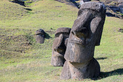 Moai at Quarry, Easter Island, Chile Stock Photos