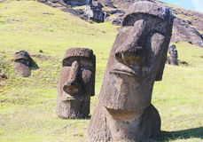 Moai at Quarry, Easter Island, Chile Royalty Free Stock Image
