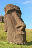 Moai at Rano Raraku on Easter Island Stock Image