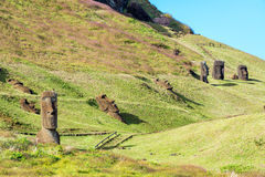 Moai at Rano Raraku. Nine different Moai visible at the historic site of Rano Raraku on Easter Island Stock Photo