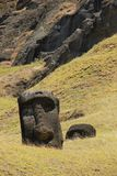 Moai. On the slopes of Rano Raraku Volcano on Easter Island, Chile Stock Photo