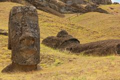 Moai Royalty Free Stock Images
