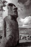 Moai statua, ahu Tongariki, Easter wyspa Czarny i biały pictu Obrazy Royalty Free