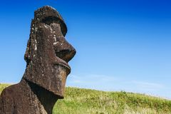 Moai statue in the Rano Raraku Volcano in Easter Island, Chile. Moai statue in the Rano Raraku Volcano in Easter Island, Rapa Nui National Park, Chile Royalty Free Stock Photo