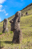 Moai Statues in Easter Island, Chile. Moai are monolithic human figures carved by the Rapa Nui people on the Chilean Polynesian island of Easter Island between Stock Photo