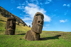 Moai statues in the Rano Raraku Volcano in Easter Island, Chile. With blue sky Stock Photos