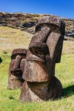 Moai statues in the Rano Raraku Volcano in Easter Island, Chile stock images