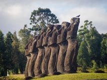 The moais of Ahu Akivi in Easter Island. Seven moais looking to the ocean, representation of Hotu Matua royalty free stock photography