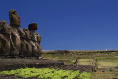 Moais with copyspace. Easter Island:Moais in a line up with copy space Stock Images