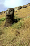 Moais- Easter Island, Chile Stock Image