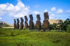 Moais statues, ahu Akivi, easter island. Chile royalty free stock images