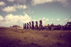 Moais statues, ahu Akivi, easter island. Chile royalty free stock image