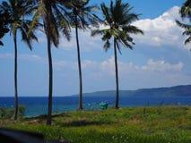 Moalboal Cebu, Philippinen stockfoto