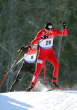 Moan (NOR). Winner of the gudersen1, FIS WORLD CUP NORDIC COMBINED. Chaux Neuve France.January 31,2009 Stock Photo
