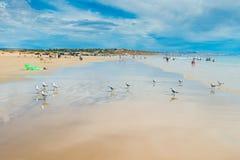 Moana海滩,南澳大利亚 免版税库存图片