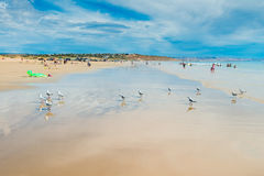 Moana Beach, South Australia. Adelaide, Australia - December 19, 2015: People relaxing and having fun at Moana Beach on a bright warm summer weekend. Moana is a Royalty Free Stock Images