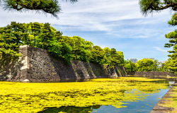 Moat around the Imperial Palace in Tokyo Stock Images