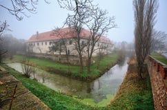 Moated manor in de marktstad van Guntersdorf op een mistige de winterdag Lager Oostenrijk stock foto's