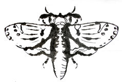 Moath dibujado tinta Foto de archivo