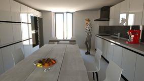 Mobília da cozinha, design de interiores Mobília e dispositivos para a cozinha Imagem de Stock Royalty Free