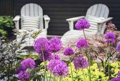 Mobília da sala de estar do jardim Fotografia de Stock Royalty Free
