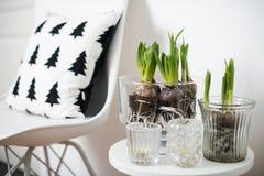 Mobília minimalista e jacintos Imagens de Stock