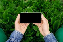 Mobiele telefoon in handen een jonge hipster bedrijfsmens Stock Foto's