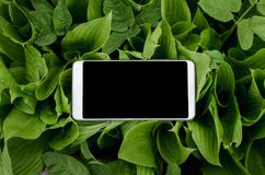 Mobiele telefoon in handen een jonge hipster bedrijfsmens Royalty-vrije Stock Afbeeldingen