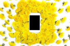 Mobil mądrze telefon otaczający żółtymi dandelions kwitnie na w Obraz Stock