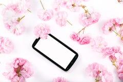 Mobil mądrze telefon otaczający różowymi czereśniowymi kwiatami Obraz Royalty Free