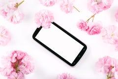 Mobil mądrze telefon otaczający różowymi czereśniowymi kwiatami Fotografia Stock