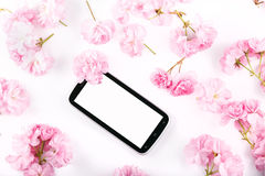 Mobil smart phone surrounded by pink cherry flowers. Royalty Free Stock Image