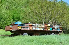 Mobile apiary-trailer at the foot of mount Mangup, Crimea. Russia royalty free stock images