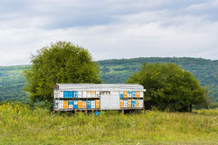 Mobile apiary trailer in meadow. View of Adygea republic nature, Russia. Mobile colorful apiary trailer in meadow. View of Adygea republic nature, Russia stock image