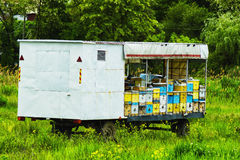Mobile apiary on wheels royalty free stock image