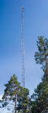 Mobile communication mast among the pines Stock Photos