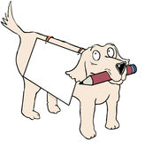Mobile dog note. Dog carrying board and pen for writing notes Stock Photography