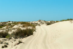 Mobile dune Stock Photography