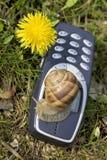 Mobile lento nella natura Fotografia Stock Libera da Diritti