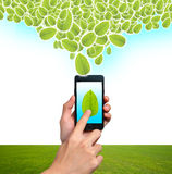 Mobile phone. Ecological Concept, touch screen mobile phone Stock Photos