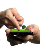 Mobile phone. Ecological Concept, touch screen mobile phone Stock Photography