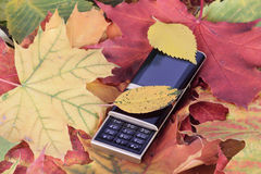 Mobile phone on autumn foliage. Mobile phone removed close up on autumn foliage Royalty Free Stock Images
