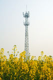 Mobile phone base station Royalty Free Stock Photos